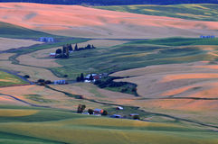 Sunset view of Palouse Stock Image