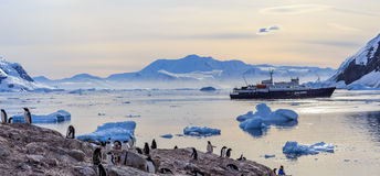 Sunset view and people gathered on the deck, Icebergs drifting. Antarctic cruise ship among icebergs and Gentoo penguins gathered on the shore of Neco bay Stock Photography