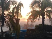 SUNSET. View from the pool trough the palmtrees Stock Photo