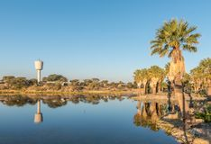 Sunset view of the dam at Gross Barmen. Sunset view with reflections of palm trees of the dam and reservoir at Gross Barmen, near Okahandja in the Otjozondjupa royalty free stock images