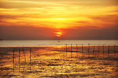 Sunset view from the sea coast Stock Image
