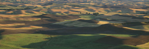 Sunset view from Steptoe Butte Park, Royalty Free Stock Photos