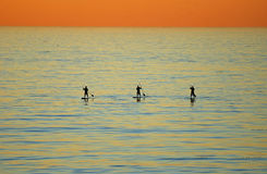 Sunset view of three paddle boarders off Heisler Park, Laguna Beach, California Royalty Free Stock Photos