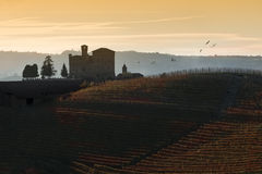 Sunset Views In The Langhe Unesco Heritage Royalty Free Stock Image