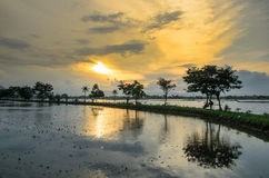Sunset at village. Beautifull sunset at village is like dreams Royalty Free Stock Images