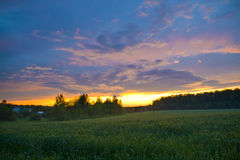 Sunset Village. Bright sunset as seen from a wheat field in the village Royalty Free Stock Image