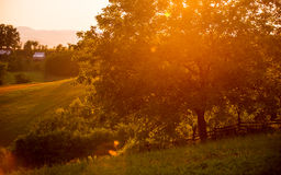 Sunset in the village, farms in the summer Royalty Free Stock Photography