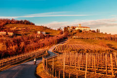 Sunset in the vineyards of Rosazzo Royalty Free Stock Images
