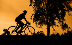 Sunset vintage bicycle Stock Photography
