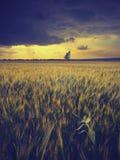 Sunset_vintage nublado fotos de archivo libres de regalías
