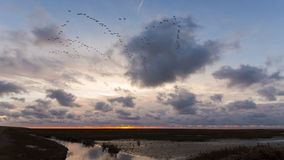 Sunset at the Waddensea Royalty Free Stock Image