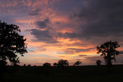 Sunset at Waelder Texas. Sunset between the trees at Waelder, Texas in September Stock Photo