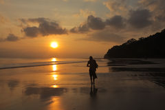 Sunset walk. A lonely man walking on a beach Stock Photography