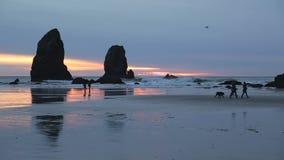 Sunset Walk, Oregon Coast stock footage
