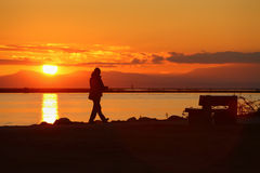 Sunset Walk, Richmond, British Columbia Royalty Free Stock Image