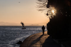 Sunset walk. A silhouette of a man with a long shadow walking near a lake, towards the sunset Stock Photography