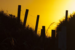 Sunset walkway Royalty Free Stock Images