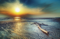 Sunset on a warm beach. Royalty Free Stock Photography