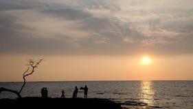 Sunset watchers next to dry tree at Anaehoomalu Beach Royalty Free Stock Photo