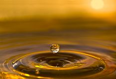 Sunset Water Drop. Water drop and ripples on a golden sunset backdrop Stock Photography