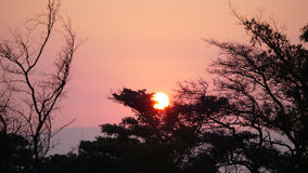 Sunset in Waterberg Royalty Free Stock Photos