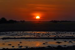 Sunset at the waterhole Royalty Free Stock Photos