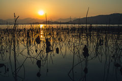 Sunset waterscape of wes lake in hangzhou,china Stock Photography