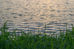 Sunset and wave of lake Royalty Free Stock Photos