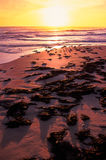 Sunset Waves Victoria Australia Royalty Free Stock Image