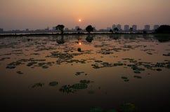Sunset on westlake Stock Photography