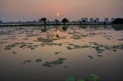 Sunset on westlake. Ho Tay, Hanoi, Vietnam Royalty Free Stock Images
