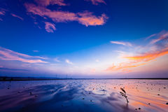 SUNSET wetland WITH PURPLE SKY Royalty Free Stock Photos