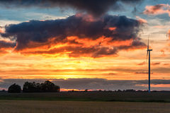 Sunset and Wheat Field with Windmill in Background. Buning Red Clouds. Stock Photo