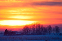 Sunset in a white winter landscape Stock Images