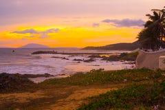 sunset wiatr pozyskiwania burzy Piękni drzewka palmowe przy plażą Wietnam Zdjęcia Royalty Free