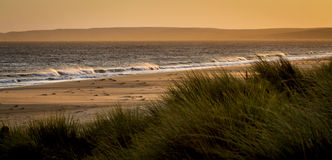 Sunset and wind. Early evening at Limantour Beach, Point Reyes. Strong wind blowing the wavetops and the beach sand. Dune grass, sand, ocean, waves Stock Photos