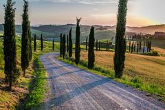Sunset and winding road with cypresses in Tuscany Stock Photos