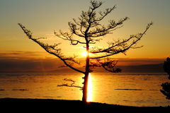 Sunset on winter Baikal. Royalty Free Stock Photos