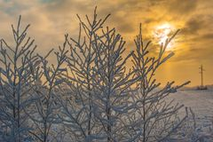Sunset in winter Stock Photography