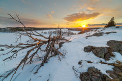 Sunset on winter coast of  lake. Royalty Free Stock Images