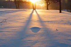 Sunset in winter Stock Photos