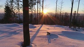 Sunset Winter Dolly View Aerial 4k. 4k aerial footage of a winter landscape during a beautiful sunset in the Polish mountains stock footage
