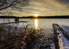 Sunset in winter evening near a frozen lake Stock Images