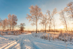 Sunset in winter field Stock Photo