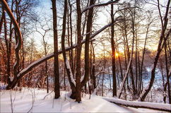Sunset in winter field Royalty Free Stock Photos