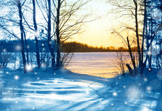 Sunset in winter forest stock photos