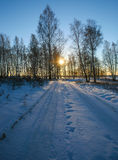 Sunset in the winter forest. Beautiful sunset in the winter forest Stock Photo