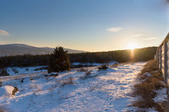 Sunset in winter forest with concrete fence. In Crimea Royalty Free Stock Images