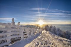 Sunset in winter forest. Poiana Brasov ski resort Stock Images