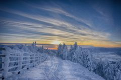 Sunset in winter forest Royalty Free Stock Photos